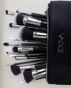 Zoeva brushes the only best