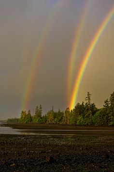 Mirrored double rainbow in Naden Harbour, Haida Gwaii, British Columbia Canada.