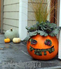 Unique Pumpkin Carving Ideas – Halloween Jack-O'-Lantern Ideas – Good Housekeeping – pumpkincarvingideas. Holidays Halloween, Halloween Pumpkins, Fall Halloween, Halloween Party, Diy Scarecrow, Manualidades Halloween, Halloween Projects, Halloween Ideas, Halloween Rules