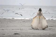"This reminds me of the character Sophia from Susanna Kearsley's book ""The Winter Sea""."