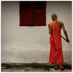 monk in lao