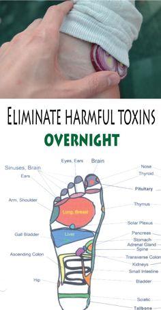 Eliminate Harmful Toxins Overnight