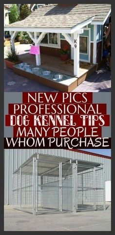 Wonderful Free of Charge New Pics Professional Dog Kennel Tips Many People Whom . Wonderful Free of Charge New Pics Professional Dog Kennel Tips Many People Whom Purchase ; Metal Dog Kennel, Diy Dog Kennel, Doge, Outdoor Decor, Outdoor Ideas, Tips, Dog Things, Alucard, People