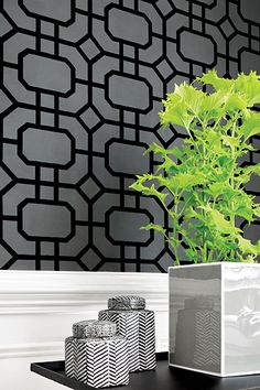 Portier Flock #wallpaper in #black on #charcoal from the Geometric Resource 2 collection. #Thibaut