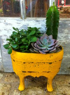 Cute little container - great color contrast. Would look good with string of pearls or smallish trailer.