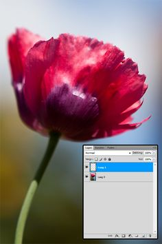 tutorial – zachte kleuren in photoshop
