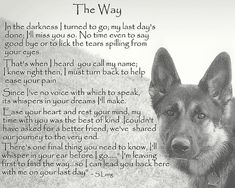 """""""The Way"""" by Sue Long http://fineartamerica.com/featured/the-way-sue-long.html"""