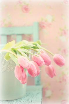 tulips by Maria Starzyk**