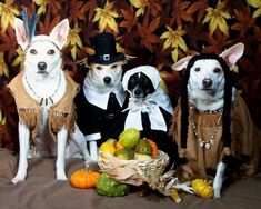 A Thanksgiving Tableau (Photo via Pinterest)