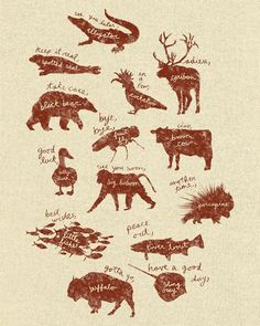 Animal Sayings - Wildlife Wonders (Litgram: Good for idioms and rhyme)