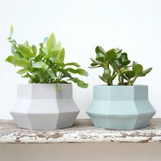 Large Geometric Planter Pot available in pale grey or soft green. Stylish…