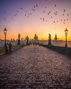 Sunrise with Charles   An incredible morning on Charles bridge today it was near freezing temperatures but that didn't stop us heading out to capture first light!  Before anyone questions it this is 1 image no photoshop the flock of birds is real and the whole scene came together perfectly!! It's my final night in Prague here with the @TheLuxuryCollection staying at the stunning @AugustinePrague it's been an epic trip can't wait to share more content with you #theluxurycollection…