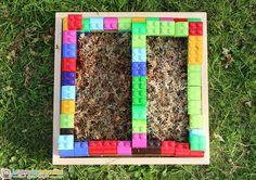 sphaigne répartie dans un carré potager pour enfant