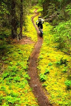 Looks like a lot of fun when you ride your bike and explore the places you have never been into.