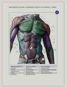 https://www.facebook.com/mansarali.art.studios/photos/pcb.1626984044243140/1626983967576481/?type=1