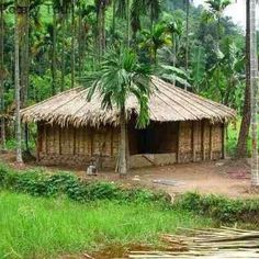 Village houses traditional and house on pinterest for Beautiful house in bangladesh