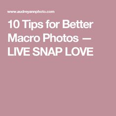 10 Tips for Better Macro Photos  — LIVE SNAP LOVE