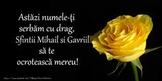 Astazi numele-ti serbam cu drag, Sfintii Mihail si Gavriil sa te  ocroteasca mereu!