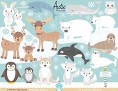 Arctic Animals Clipart-Polar Animals Clipart-Arctic Animals Clip Art-Narwhal Whale-Orca Whale and Beluga Whale- Arctic-Arctic Fox-Arctic Hare-Polar Perfect for scrapbooking, invitations, card making and all your creative craft projects. Polar Animals, Farm Animals, Polar Bear, Frozen Painting, Arctic Hare, Polo Norte, Hamster, Animal Faces, Digital Collage