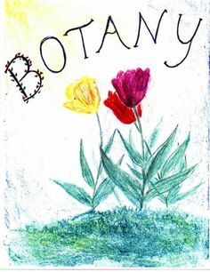 Waldorf ~ 5th grade ~ Botany ~ Cover Page ~ main lesson book