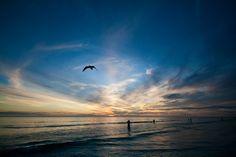 Live Beach Cams: Siesta Key Live Streaming Beach Cam #Florida