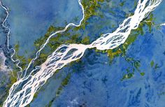 Landsat image of a braided section of the Congo River Congo River, Contemporary Dance Costumes, Earth From Space, Tree Of Life, Aerial View, Geology, North America, Braids, Abstract