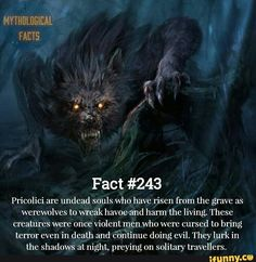 Fact Pricolici are undead souls who have risen from the grave as werewolves to wreak havoc and harm thc living. Thcsc creatures were once violent men who were cursed to bring l/error even in death and cohtinue doing evil. They lurk in the shadows at n Werewolf Facts, Werewolf Legend, Werewolf Hunter, Magical Creatures, Fantasy Creatures, Werewolf Mythology, Myths & Monsters, Legends And Myths, Vampire Art