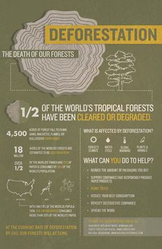 Earth Day 2014: Deforestation Facts infographics earthday Go vegan, Go palm oil free, use recycled paper