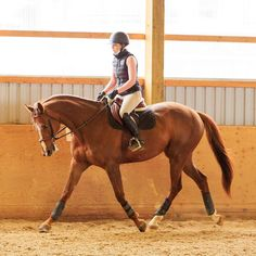 Does your horse get spring fever? 🌷 Spring Fever, Equestrian, Horses, Lifestyle, Horseback Riding, Show Jumping, Horse, Equestrian Problems