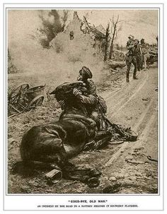 soldier with war horse in WWI Military Art, Military History, World War One, First World, Ww1 History, Horse Sketch, Man Of War, Italian Artist, Historical Pictures