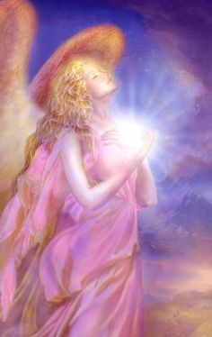 Pink Angel of light