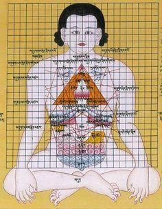 Çin tıbbına göre, insan vücudundaki beş iç organda zehirli maddeler birikir, bu zehirli maddelerin birikmesi, vü cutta belirtiler bırakır. ...