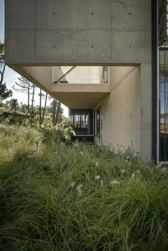 View full picture gallery of The Wall House