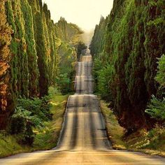 Wonderful Italy , Bolgheri, Tuscany