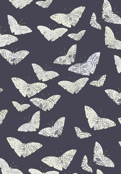 Lacewing Moth colour way British Style, Great Britain, Moth, Print Design, Hand Painted, Colour, Modern, How To Make, Prints