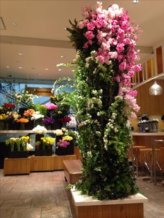Flower Arrangements, Flowers, Plants, Floral Arrangements, Plant, Royal Icing Flowers, Flower, Florals, Floral