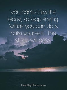 You can't calm the storm so stop trying. What you can do is calm yourself. The storm will pass. Great Quotes, Me Quotes, Motivational Quotes, Funny Quotes, Inspirational Quotes, Place Quotes, Minions, Abuse Quotes, Calming The Storm