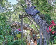A whimsical old cottage to tour. Enter through the iron gate. Don't get lost unless you want to. If these walls could talk. Storybook Homes, Storybook Cottage, Old Cottage, Cottage Living, California Real Estate, California Homes, Cottage Shutters, Cottage Names, Fairytale Cottage