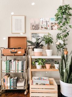Einrichtungsstil Tips On How To Care For Your Deck Think your deck is impervious to damage because i Cute Room Ideas, Cute Room Decor, Room Decor Bedroom, Bedroom Ideas, Bedroom Inspo, Bedroom Inspiration, Jungle Living Room Decor, Living Room With Plants, 50s Bedroom
