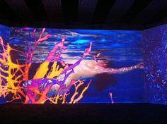 Pipilotti Rist Pipilotti Rist, Gustave Courbet, Jeff Koons, Rene Magritte, Video Installation, 3 Arts, Surface Design, Random Things, Aesthetics