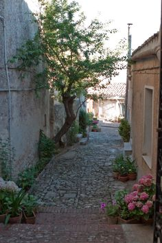 Typical #courtyard in #Erice, #Sicily. This medieval town is about 15 km from #Trapani, just 10 minutes by cablecar. To visit it, have a look at www.bebtrapanilveliero.it