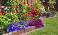 55 képet láthatsz arról, hogyan lehet kisebb és nagyobb területű előkerteket gyönyörűvé varázsolni. Hogy otthonoddal már első pillantásra a legjobb benyomást kelthesd másokban, fontos, hogy az előtte elterülő kertet miként tervezed meg, milyen növényekkel és kreatív megoldásokkal teszed még tetszetősebbé. Ehhez kaphatsz most könnyen megvalósítható ötleteket! Mit főzöl ma? Süssünk-főzzünk[...]