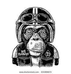 Monkey in the motorcycle helmet and glasses. Hell monkeys and 1% lettering on the waistcoat. Vintage black engraving illustration for poster and t-shirt design bike club. Isolated on white background