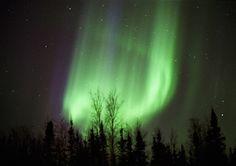 pinterest.com/fra411 #aurora #borealis - Aurora Borealis   Alaska Arctic Circle
