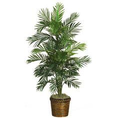 56 Inch Areca Palm Silk Tree w/Basket