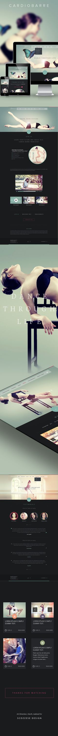 Cardiobarre / Website by Andrea Censi, via Behance