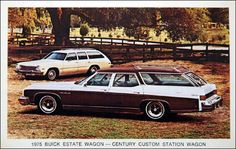 1975 Buick Station Wagon. Drove to Florida in this. No seat belts. Facing backward in the 3rd row. My dad throwing blind punches into the backseat.