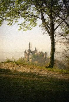Kernland-Guide: Athon Kaiserwald