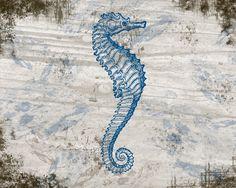 seahorse on wood