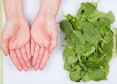 Resultado de imagem para Duas mãos de frutas e de vegetais